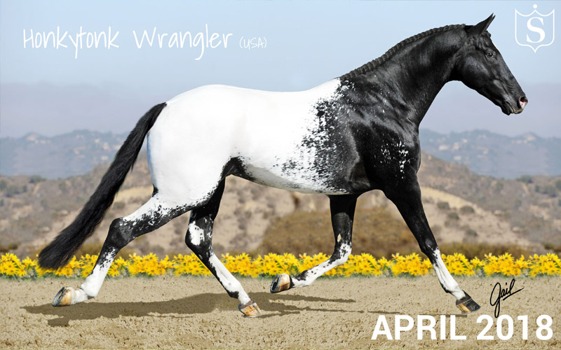 Mr April 2018 - Honkytonk Wrangler