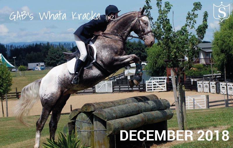 Mr December 2018 - GAB's Whata Kracka